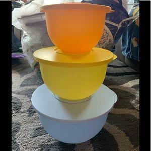 Tupperware | 3 Bowl Set